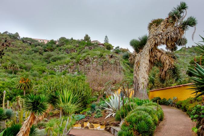 Naturaleza canaria desde Las Palmas de Gran Canaria
