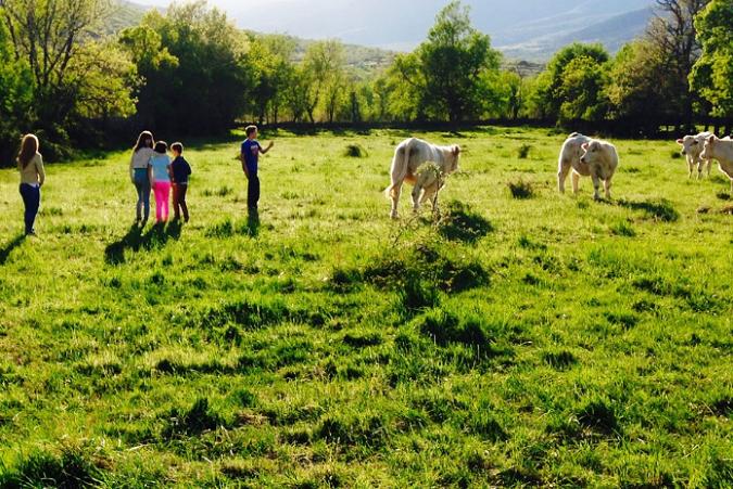 """Vive la primavera en """"El Capriolo"""" y disfruta de animales, naturaleza y más"""